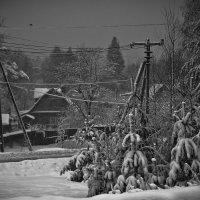 Полдень на хуторе близ северной столицы или Обкраденные солнцем :: Сергей В. Комаров