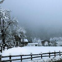 В горах туман :: Иля Григорьева