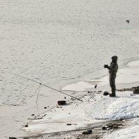 И ведь никто не заставляет ловить холодною зимой! :: Ирина Данилова