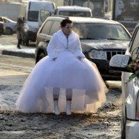 Зимняя невеста :: Николай Танаев