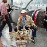 Китайский дедушка :: Василий Слободенюк