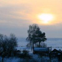 Пронзила вершины деревьев  желто-бархатным светом заря... :: Евгений Юрков