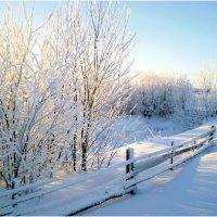 Просто зима. :: Андрей Русинов