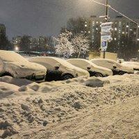 ...а снег идет... :: Ирина Шарапова