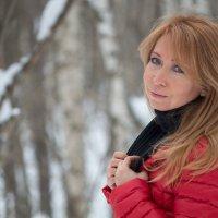 Зима... :: Елена