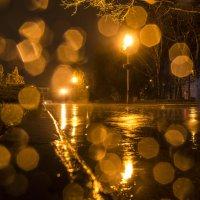 Прогулка по воде) :: Геннадий Катышев