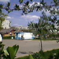 Летом в городе :: Миша Любчик