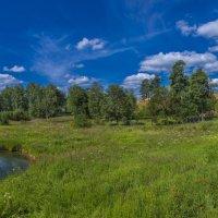 пейзаж рядом с Покровским ставропигиальным женским монастырем. :: юрий макаров
