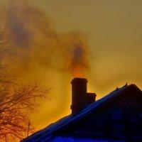 Морозное утро :: Анна Никонорова