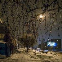 в зимний дождь :: Андрей ЕВСЕЕВ