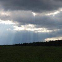 Солнечный дождь :: Алексей К