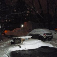 Занесённые снегом :: Mary Коллар