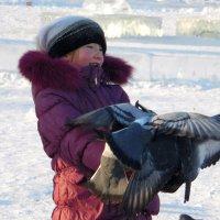 Охапка голубей. :: nadyasilyuk Вознюк