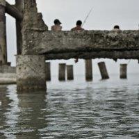 fishing :: Vuqar Abdullah
