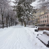 Сквер зимой :: Юрий Стародубцев