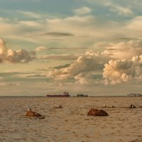 Небо над Питером :: Владимир Колесников
