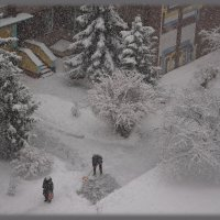 Снег пошёл!!! :: Валентина Данилова
