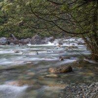 Golden creek 2 :: Сергей Бушуев