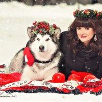 Зимняя фотосессия с маламутом :: Татьяна Семёнова