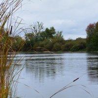 Озеро :: Оксана Провоторова