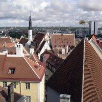 Над крышами Таллинна :: Александр Рябчиков