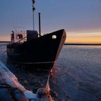 Замерзающий :: Дмитрий Близнюченко