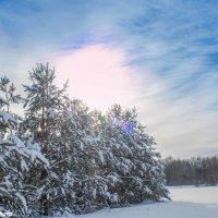 Мороз и солнце :: Руслан Веселов
