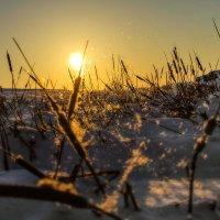 Солнечный вихрь :: Сергей Бутусов
