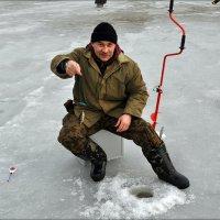 Зимняя рыбалка :: Татьяна Пальчикова