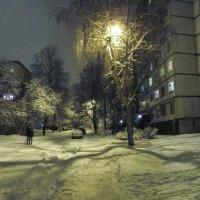 Февральский снегопад :: Александр Сальтевский