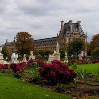 Вид на Лувр из сада Тюильри :: Елена Даньшина