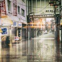 Japan. Tokyo :: Evgeny Kornienko