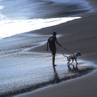 и сам прогулялся, и собака довольна.. )) :: Dafna !