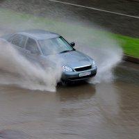 после дождя :: Анатолий Стрельченко