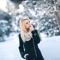 февральские дни :: Илья Земитс