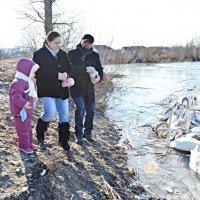 Буковинці їздять до Чорториї годувати лебедів :: Степан Карачко