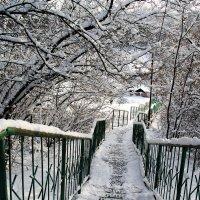 Зимушка-зима! :: Alexandra G.