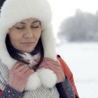зимние мечты... :: Александр Александр