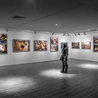 Цветной мир :: Марат Закиров