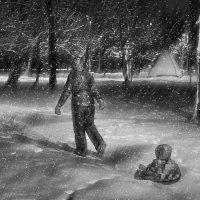 Я на санках, снег пешком... :: Ирина Данилова