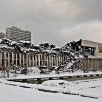 Сгоревшая библиотека АН..... :: Ирина Князева