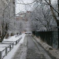 Февраль :: Валентина Жукова