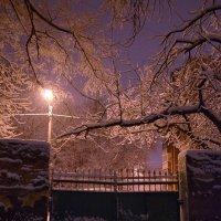 Зимний вечер :: Татьяна Кретова