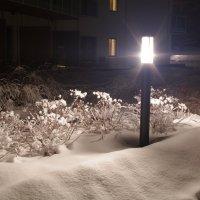 Зима,ночь, улица, фонарь, мороз :: Александр