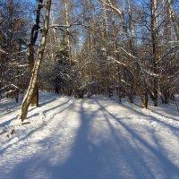 Под голубыми небесами Великолепными коврами, Блестя на солнце, снег лежит :: Андрей Лукьянов
