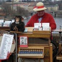 Один из символов Праги... :: Алёна Савина