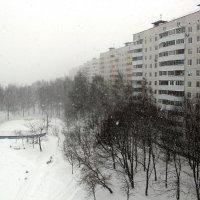 Cнегопад :: Лариса Корженевская