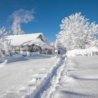 Бело-голубая зима :: Владимир Чуприков