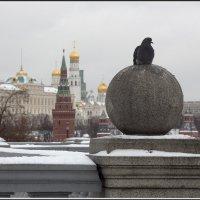 Моя Москва. Про Кремль :: Михаил Розенберг