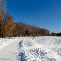 Зимняя дорога.. :: Viktor Nogovitsin